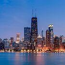 Chicago Waterfront by Radek Hofman