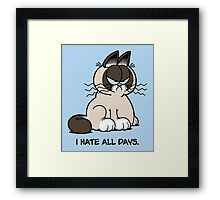 Always Grumpy Framed Print