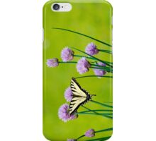 Sugar and Spice Butterfly Art iPhone Case/Skin