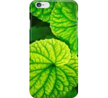 Green Leaf Abstract iPhone Case/Skin
