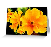 SOLD - ORANGE FLOWER ENHANCED Greeting Card