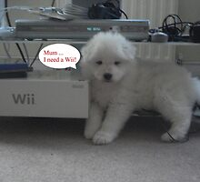 OUR Wii PUPPY- NEEDS A Wii by Colleen2012