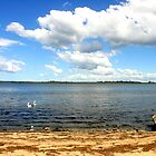 King Lake - Metung by Chris Chalk