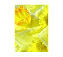 A TOUCH OF SPRING Art Print