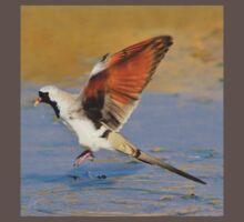 Blur of Flight - Namaqua Dove - African Wildlife Kids Clothes