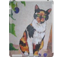 Calico Cat painting and part of Spankypants iPad Case/Skin