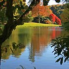 By The Lake, Stourhead by RedHillDigital