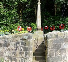 War Memorial, Alton by Rod Johnson