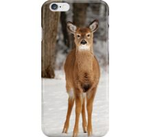 Deer in Snow iPhone Case/Skin