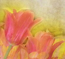 Spring Tulips in Pastels by Carol Vega