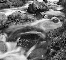 Cot Valley, Cornwall, UK, Stream 1 ~ Atlantic Coast by Debra  Jayne