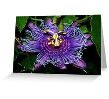 Swirl of passion Greeting Card