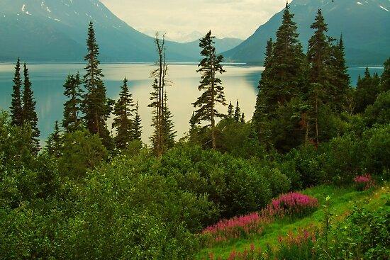 Tutshi Lake In May by Yukondick