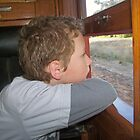 A train trip to Tocumwal NSW on the vintage train by Margaret Morgan (Watkins)