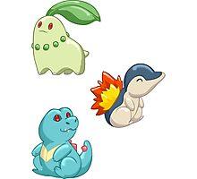 Pokemon Starters - Gen 2 Photographic Print