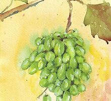 Picture a Vineyard by Maree  Clarkson
