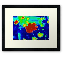 Color Riot Framed Print