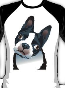 quizzical Bailey T-Shirt