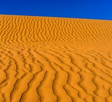 Dunes by Radek Hofman