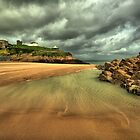 Windy beach by Richard Lewis