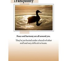 Tranquility by Heartland