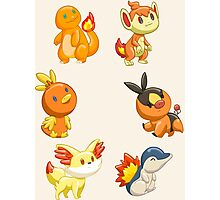 Pokemon Starters - Fire Types Photographic Print