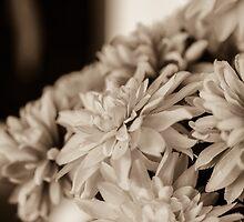 Autumn Memories by MaryTimman