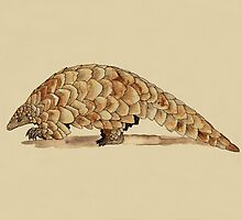 Pangolin by djrbennett