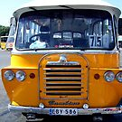 Malta Bus I by Ludwig Wagner