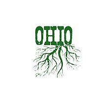 Ohio Roots Photographic Print