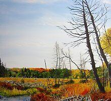 Autumn Swamp by Lori Kallay