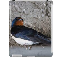 dove under the roof iPad Case/Skin