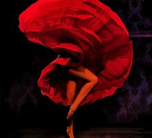 Flamenco Flow by solnoirstudios