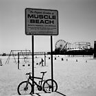 Muscle Beach, Santa Monica by Matthew Walters