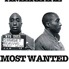 AMERIKAZ MOST WANTED by chris-tiana