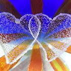 Hearts Entwined  by ©The Creative  Minds