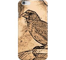 Open Shade iPhone Case/Skin