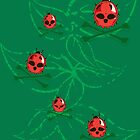 Lady Killer Bugs by Chris Risse