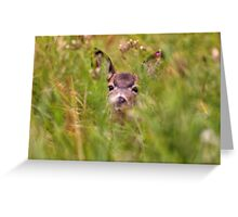 On Alert! Greeting Card