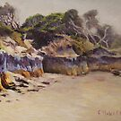 Anglesea Prevailing Shoreline by Franciska Howard