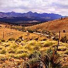Flinders Ranges - Wilpena Pound by Georgie Sharp