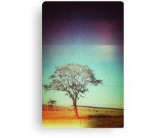 Light Tree Canvas Print