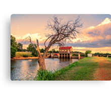 The Tree on the Dam Canvas Print