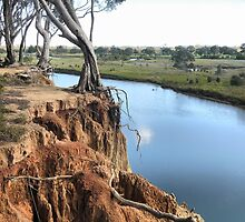 Werribee Winding (3) --  Nearing the Edge.. by Larry Lingard-Davis
