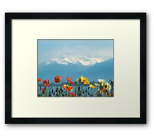 Swiss Flowers Framed Print