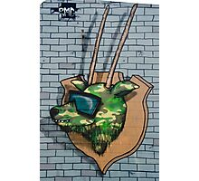 Graffiti mural Gazelle on teh brick wall Photographic Print