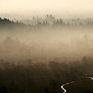 8.9.2014: September Morning IV by Petri Volanen