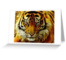 Sumatran Tiger III Greeting Card