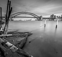 Blues Point Reserve by reindomingo