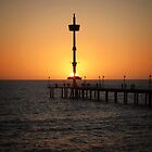 Brighton Jetty by Cindy Hitch